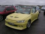 Peugeot 306 Lemon Pulp 1